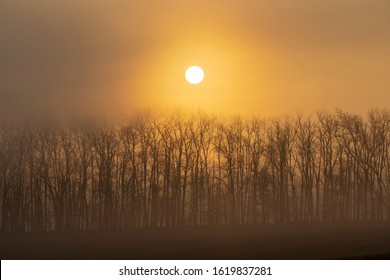 sunrise near Znojmo, South Moravia, Czech Republic - Shutterstock ID 1619837281