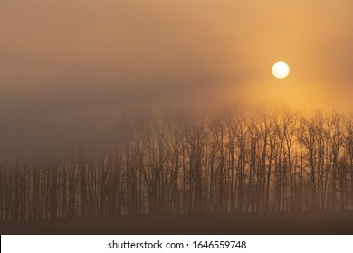 sunrise near Znojmo, South Moravia, Czech Republic - Shutterstock ID 1646559748
