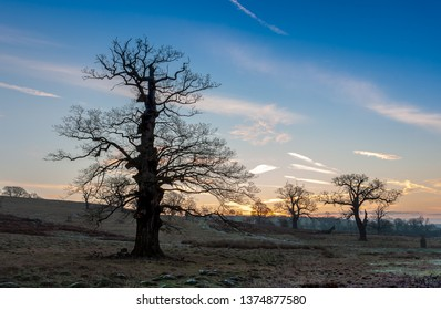 Sunrise in Northamptonshire