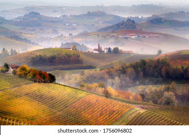 Sunrise on Barolo lands and fog in Langhe Region, Piemonte Piedmont. Unesco World Heritage site in Northern Italy. Agriculture Vineyards and Wine production.