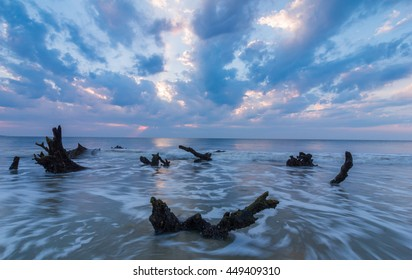 Sunrise on Driftwood Beach
