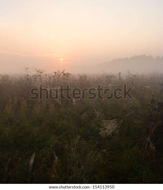 sunrise on foggy morning meadow