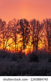sunrise on a frosty morning