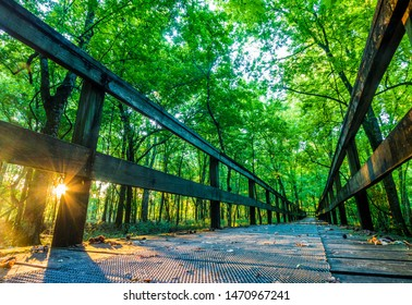 """Sunrise On A Hiking Tail Natchez Trace Parkway, Tupelo, Mississippi. The Natchez Trace, also known as the """"Old Natchez Trace"""", is a historic forest trail within the United States"""