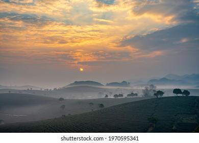 Sunrise on Moc Chau tea hill, Moc Chau village, Son La province, Vietnam