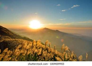 Sunrise on the mountain with sunshine, mist and beautiful clouds, Miscanthus was the wind.