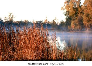 Sunrise on the Murrumbidgee River near Wagga Wagga, NSW, Australia.