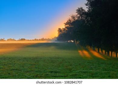 Sunrise on Open Field