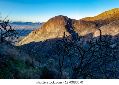 Sunrise on a stone cliff along the Finger Rock hiking trail in the Catalina Mountains north of Tucson. Cholla cactus, ocotillo and grass with city and mountain views. Pima County, Arizona. 2018.
