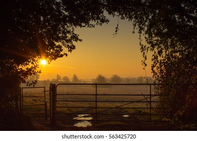 Sunrise over the British Countryside with a farm gate in Wiltshire