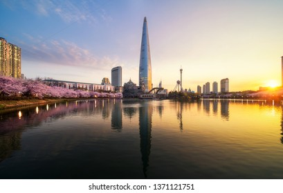 Sunrise over cherry blossom park and tower background  in Seoul city, South Korea, this image can use for travel, night, cityscape, sakura, and holiday concept