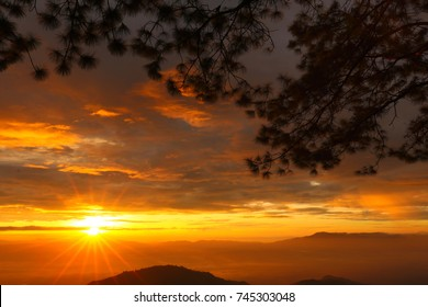 Sunrise over the dark mountain, field of foggy and mountain far away at horizon. Rays of light around the sun, orange light in the sky and dark clouds over the sun. Dark pine tree branch in foreground