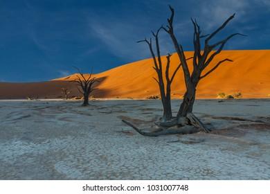 Sunrise over Deadvlei, Namib desert, Namibia