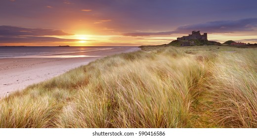 Sunrise over the dunes at Bamburgh, Northumberland, England with the Bamburgh Castle in the background.