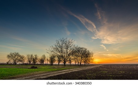 Sunrise over a field with mist in the morning