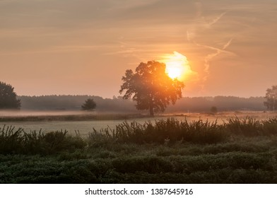 Sunrise over a field with morning mist