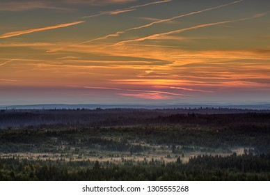 Sunrise over foggy forest with colorful sky