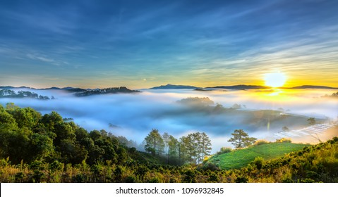 Sunrise over hillside as the sun rising from horizon reflect light bright yellow sky. Below cloudy mist covered valleys flooded pine forests create impressive beauty highlands in morning.