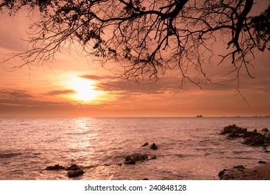 Sunrise over the Horizon of the Sea with Silhouette Tree Branch, Samaesarn, Sattahib, Chonburi, Thailand