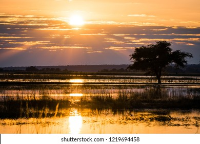 Sunrise over the Okavango delta in Botswana Africa
