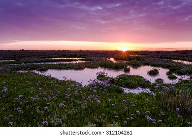 Sunrise over the salt marshes near Wells.