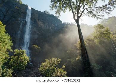 Sunrise over waterfall in wild forest shrilanka