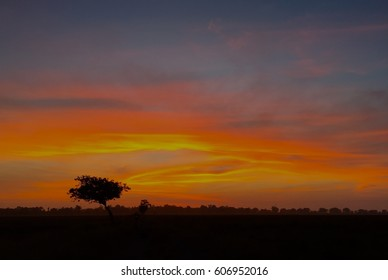 Sunrise at paddy field in north of Malaysia after harvest season.
