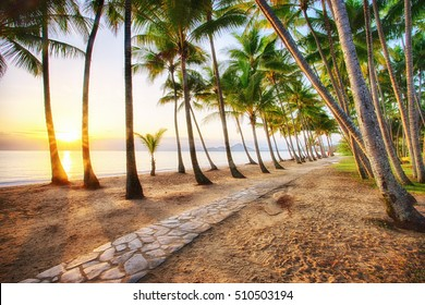 Sunrise at Palm Cove in Cairns, Tropical North Queensland