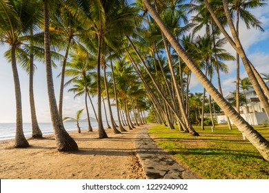 Sunrise at Palm Cove near Cairns in Tropical North Queensland, Australia
