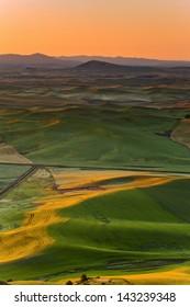 Sunrise Palouse Hills
