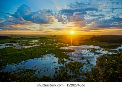 Sunrise in Pantanal, Brazil. Pantanal is the world's largest wetland