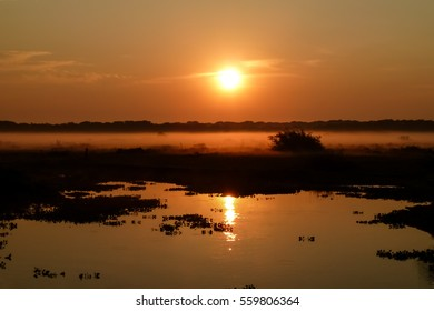 Sunrise Pantanal wetlands, Brazil