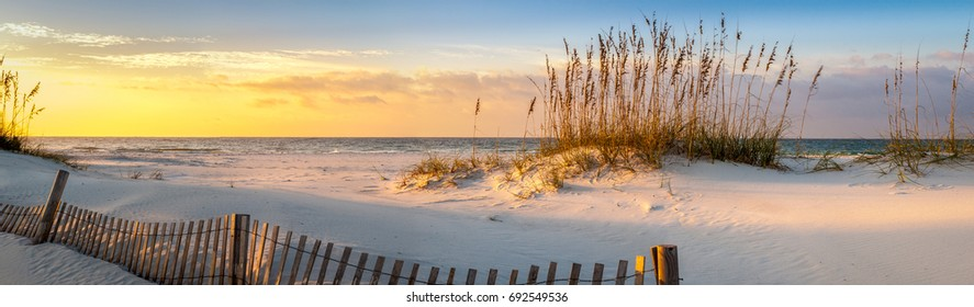 Sunrise at Pensacola Beach with Sea Oats and Dune Fence Panoramic