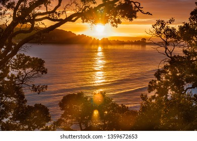 Sunrise photograph framed by branches and leaves from Mount Maunganui Tauranga New Zealand