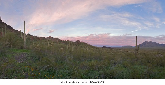 Sunrise in Picacho Peak State Park.
