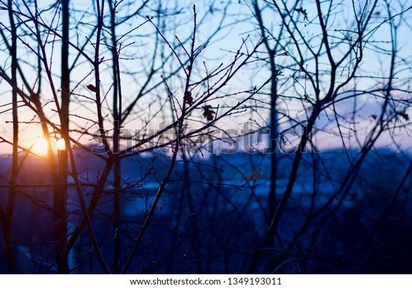 Sunrise in Poland