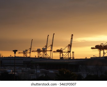 Sunrise Port, Kobe, Japan
