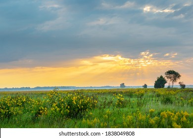 Sunrise and prairie, Prairie Ridge State Natural Area, Marion County, Illinois.