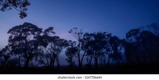 Sunrise pre dawn Dromana Victoria Australia farmland trees
