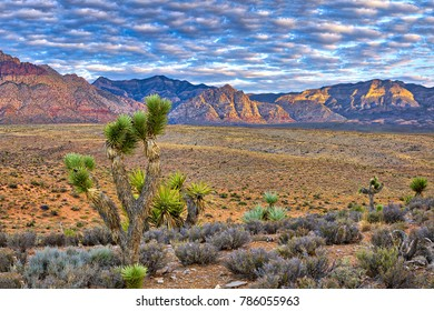 Sunrise at Red Rock Canyon in Nevada.