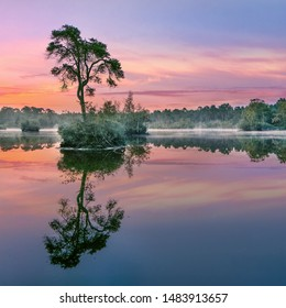 Sunrise reflected in a lake in a forest in the South of The Netherlands