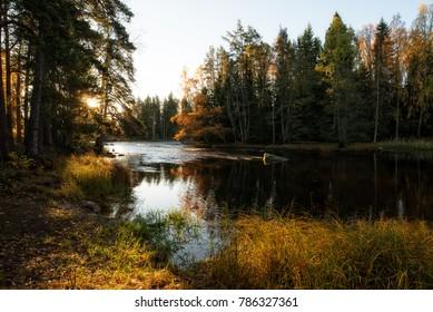 Sunrise river in Farnebofjarden national park in Sweden