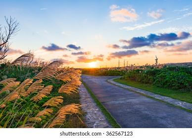 Sunrise, road, landscape. Okinawa, Japan.