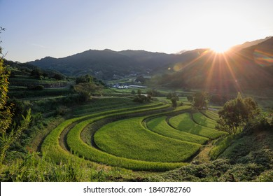 Sunrise of Rural terraced paddy field scenery of autumn in Japan (Asuka village, Nara)