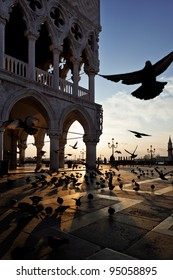 Sunrise at San Marco Square, Venice, Italy. Pigeons flying near the Doge`s Palace.