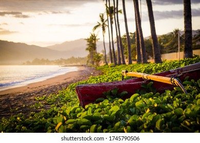 Sunrise at sandy beach with palm trees, green plants and red wooden boat in Dili, East Timor