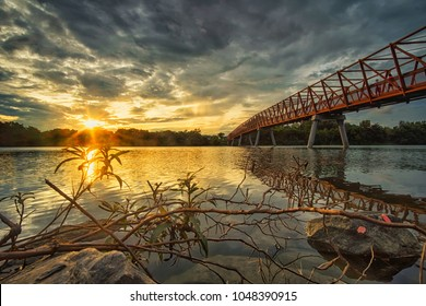 Sunrise scenery by the pedestrian bridge to Lorong Halus from Punggol Waterway Park, Singapore