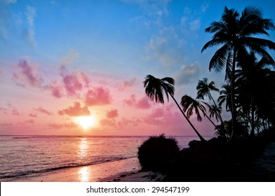 Sunrise with the sea and palm trees