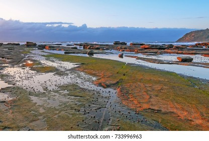 Sunrise Seascape from Rock Platform - Taken at Avoca Beach, Central Coast, NSW, Australia