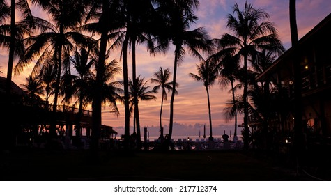 Sunrise with silhouette palm trees at resort